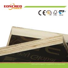Phenolic Dynea Brown Black18mm Film Faced Marine Plywood for Concrete Formwork Shuttering
