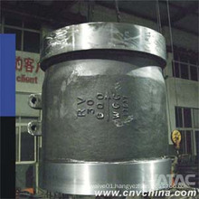 Stainless Steel Flanged Nozzle Check Valve