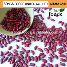 Buy high quality red Kidney Beans in alibaba