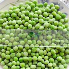 Haute qualité IQF surgelé pois verts
