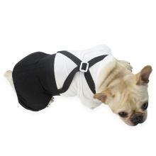 xxxs dog clothes medium dog clothes pet clothes display
