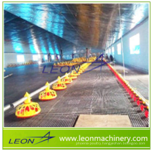 LEON automatic chain feeding system poultry equipment for breeders