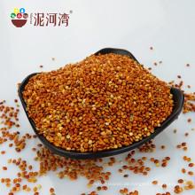Roter Besen-Mais Millet China