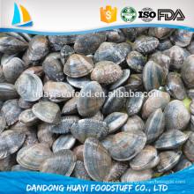 Faible consommation de fruits de mer riches en protéines sélectionnée clampe de bébé gelée