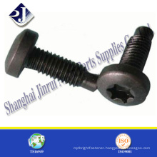 pin torx security screw
