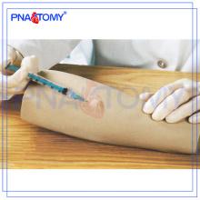 Modèle d'injection intradermique de bras PNT-TA013