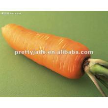 Chinese fesh carrot