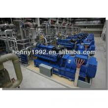 Diesel/ Natural Gas/ Biomass Turnkey Plant
