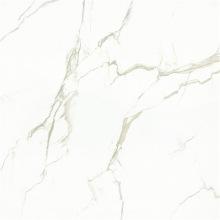 800X800 Porcelain Polished Flooring Copy Marble Tiles