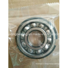 SKF Full Complement Bearing Bl305 Ball Bearing Bl305/Nr in Stock