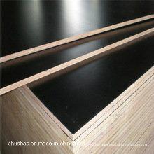 Contrachapado de madera de abedul / abedul / madera dura / madera contrachapada marina (MP001)