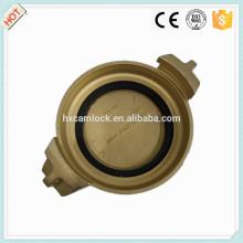 Ковка Латунь Tankwagon соединение по DIN 28450 МБ с хорошим качеством
