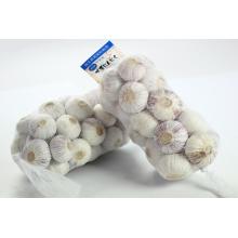 Alho de colheita fresca único dente alho/Single-semente 2015 de yunnan