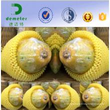 Изготовление Китая Подгоняло ЭПЕ фруктами, защитный и Прокладочный net для Азимины Упаковка