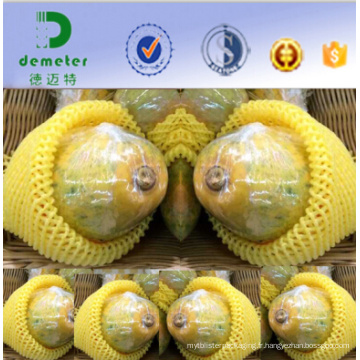 Chine fabricant personnalisé EPE Fruit Protection et Cushioning Net pour Pawpaw emballage