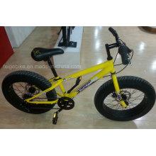 """Bicicleta de Montaña de 6 Velocidades Young Mountain 20 """"(FP-MTB-FAT05)"""