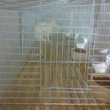 China jaulas de pollo soldadas galvanizadas baratas profesionales del alambre