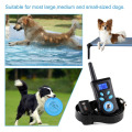 Dog Training Device Trainer Control remoto impermeable 500M