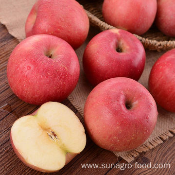Red Star Apple For Export