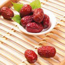 Chinese azjube Precio más bajo Spine Date Seeds