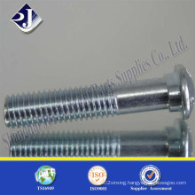 Track Bolt with Oval Neck
