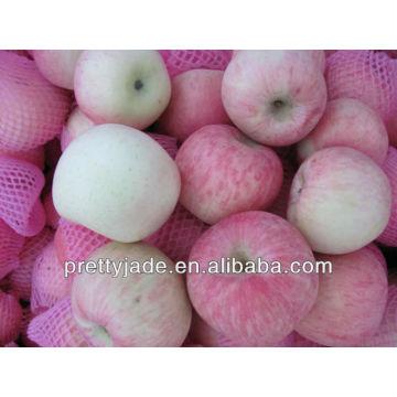 Шаньдун происхождения свежие fuji apple