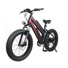 Hot selling 48V 750W 11.6Ah dual lithium battery adult fat e bike