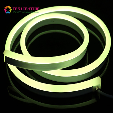 Anti-pourriture durable IP68 24V RGB LED Neon Flex