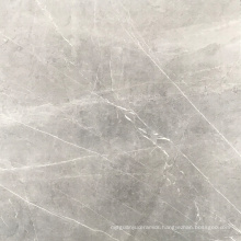 Homogeneous Tiles and Outdoor tiles with 800*800mm Floor tiles price in China