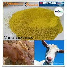 Rumiante Multi-enzima, aditivo para piensos de rumiantes