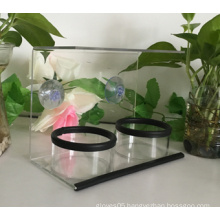 Clear Window Bird Feeder with Strong Suction Cup