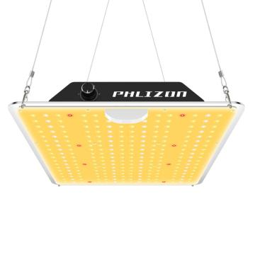 En İyi Kuantum Kurulu LED Grow Lights Phlizon