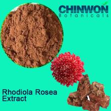 Verbessern Sie Immunität Rhodiola Rosea Extrakt