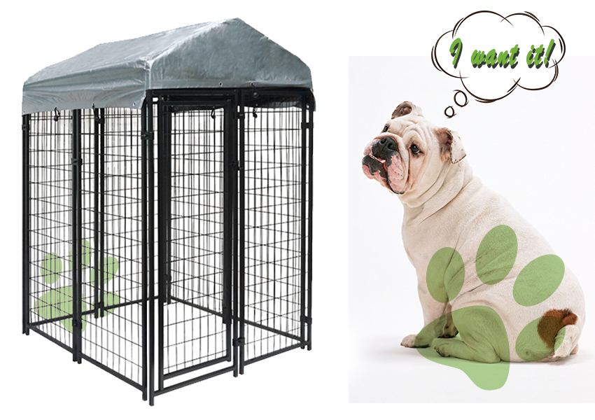 wire welded dog kennel-1