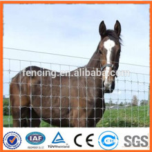Galvanized grassland mesh/grassland fence / Animal fence for sales