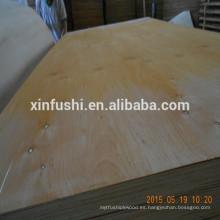El mercado de Egipto requirió contrachapado de madera de álamo de abedul
