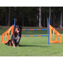 Dog Agility Jump Set