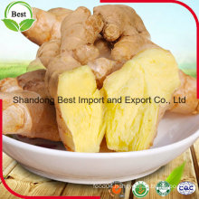 Chinese Fresh Ginger with Different Size
