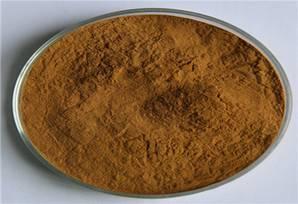 Extrato de planta a granel de alta qualidade Extrato de cogumelo Chaga orgânico em pó