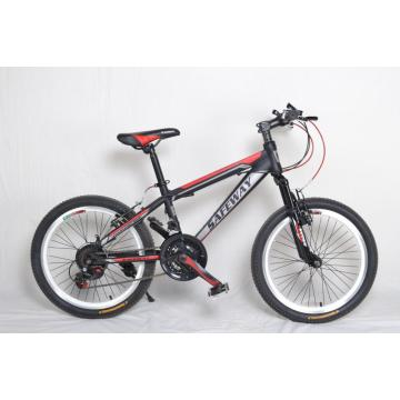 Bicicleta BMX Bicicleta Motocross