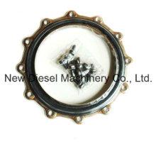 Cummins Generator Parts K50 Oil Seal 3630681