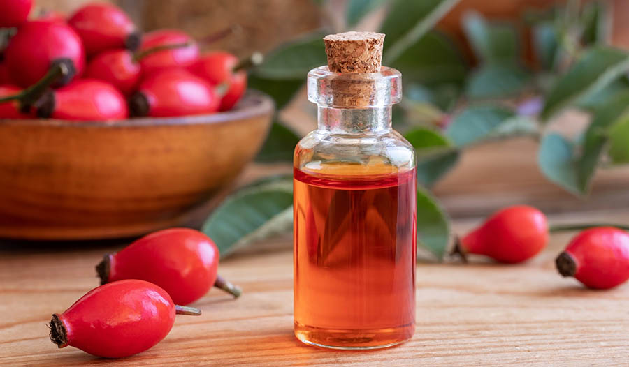 rose hip extract1