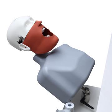 Unidade de simulação de cabeça fantasma HST para clínica