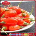 2015 de cultivos orgánicos gojiberry con buen precio