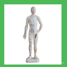 """11 """"Modèle de points corporels d'acupuncture humaine, modèle chinois d'acupuncture humaine"""