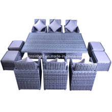 Indoor & Outdoor Rattan Furniture for Garden / Living Room with 6 Seater / SGS (5007)