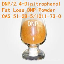 DNP für fetten Verlust 2, 4-Dinitrophenol CAS 51-28-5 hoher Reinheitsgrad DNP Gewichtsverlust-Steroid-Pulver DNP