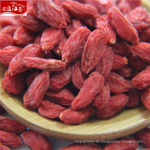 Berühmte Frucht der neuen Ankunft goji Beere im Porzellan