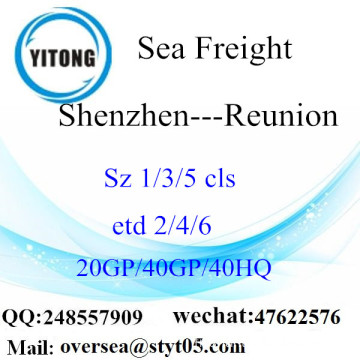 Shenzhen Port Sea Freight Shipping To Reunion