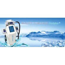 Zeltiq Coolsculpting que adelgaza la máquina y la congelación gorda Cryolipolysis que adelgaza la máquina de la belleza